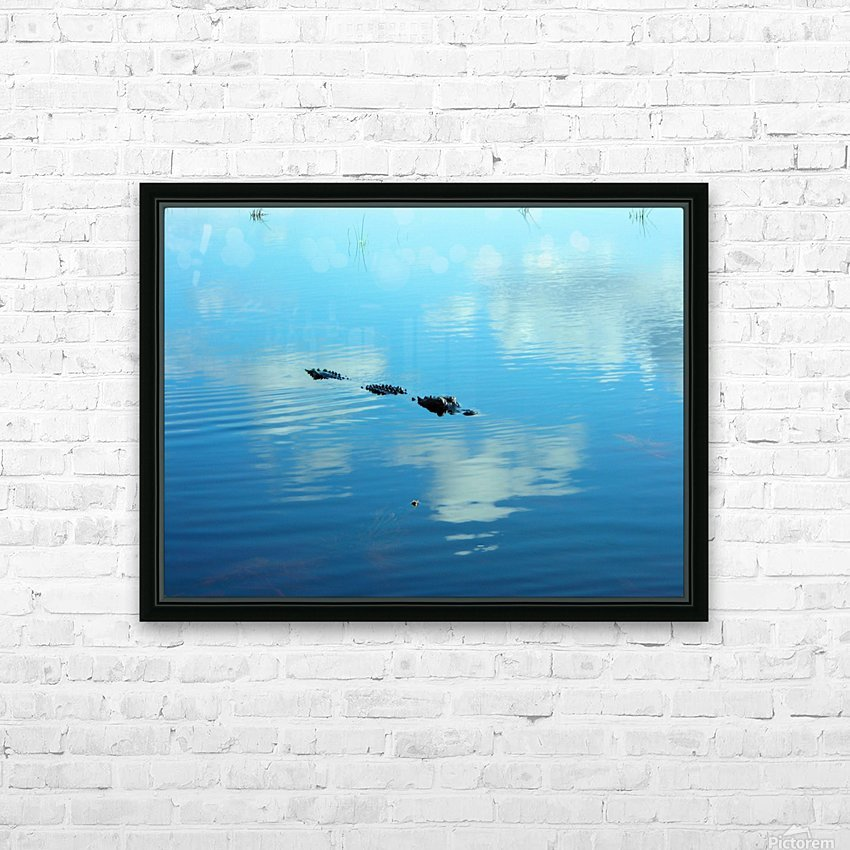 Everglades1 HD Sublimation Metal print with Decorating Float Frame (BOX)