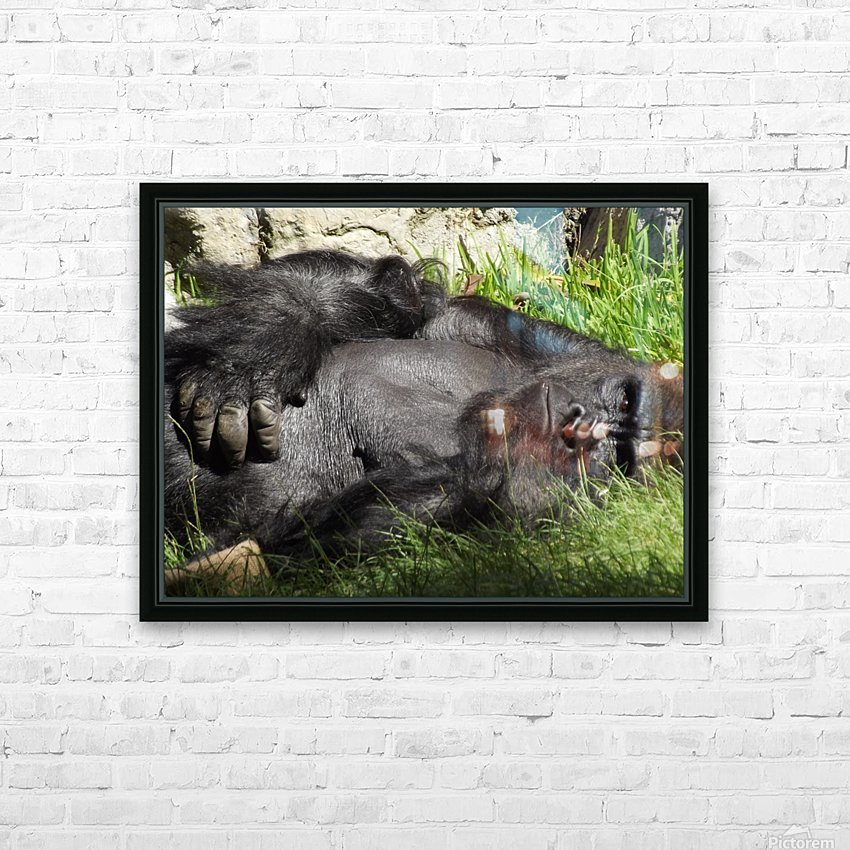 Gorilla Glare HD Sublimation Metal print with Decorating Float Frame (BOX)