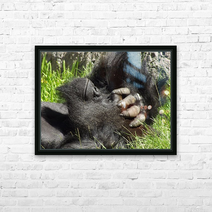 Gorilla Headache HD Sublimation Metal print with Decorating Float Frame (BOX)