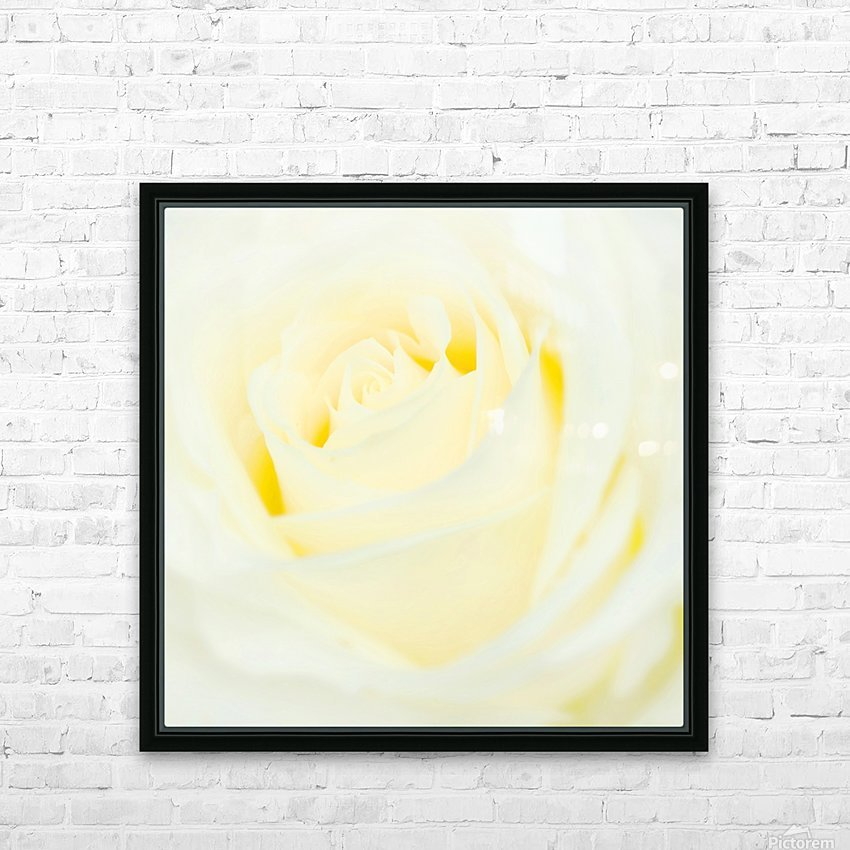 The White Rose HD Sublimation Metal print with Decorating Float Frame (BOX)