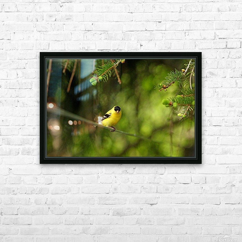 Goldfinch On The Disappearing Line HD Sublimation Metal print with Decorating Float Frame (BOX)
