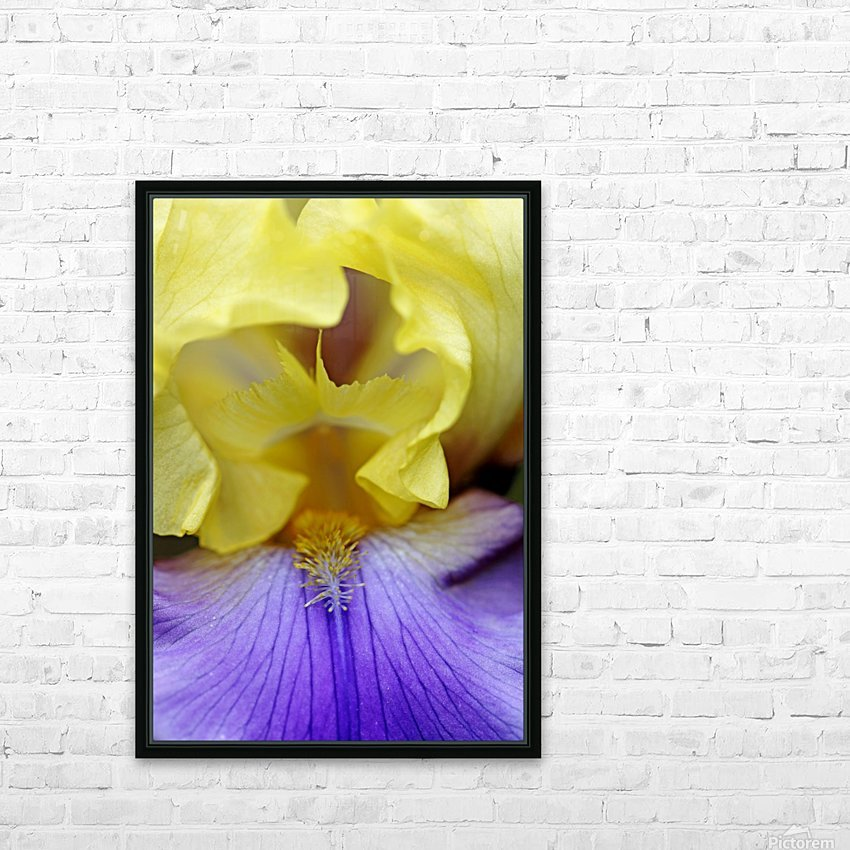 Lavender And Yellow Iris Heart HD Sublimation Metal print with Decorating Float Frame (BOX)