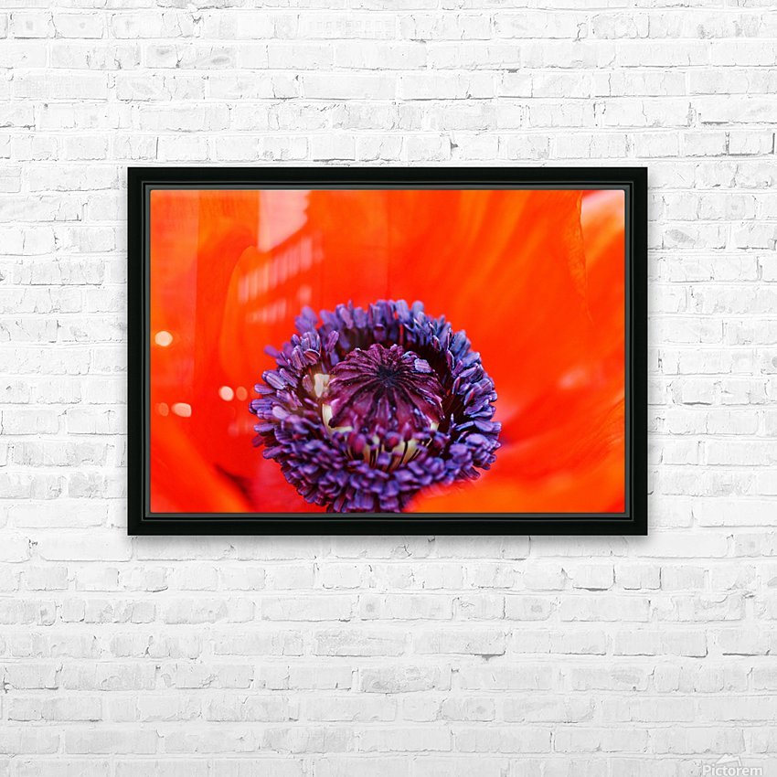 Poppy Whorl HD Sublimation Metal print with Decorating Float Frame (BOX)