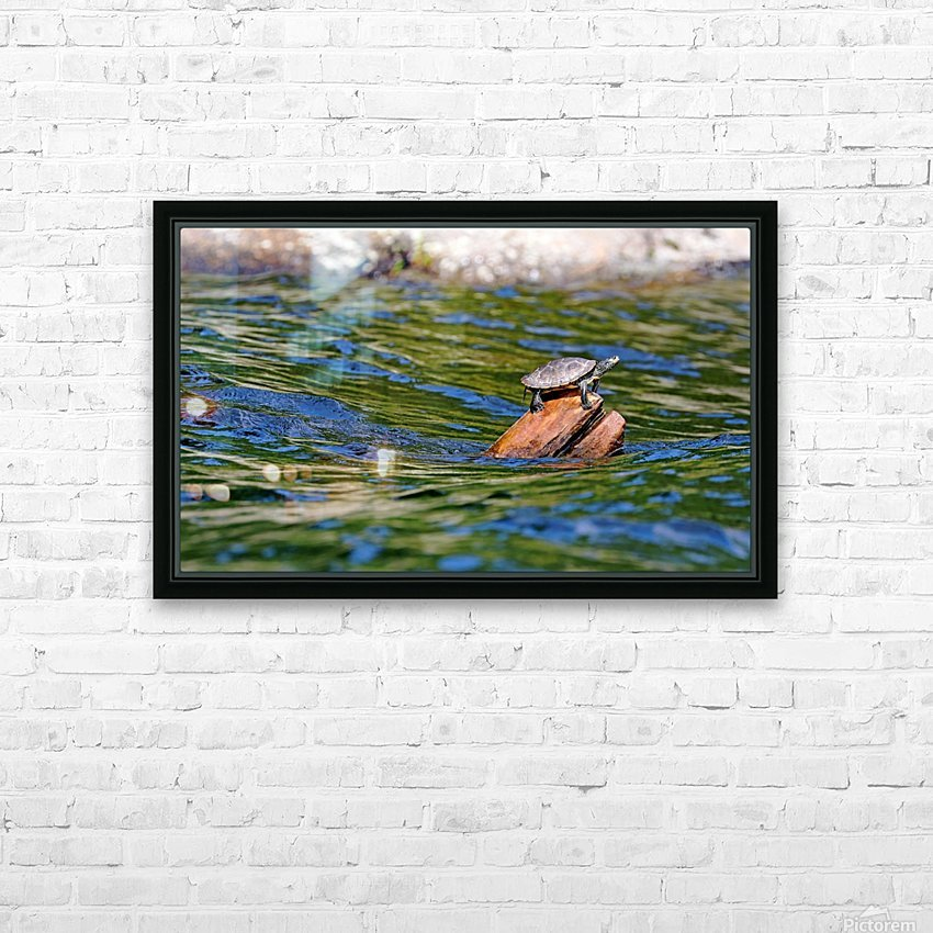 Map Turtle HD Sublimation Metal print with Decorating Float Frame (BOX)