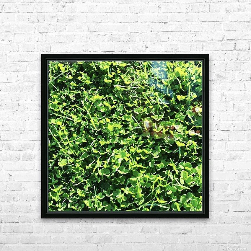 Grassy Wonderland HD Sublimation Metal print with Decorating Float Frame (BOX)