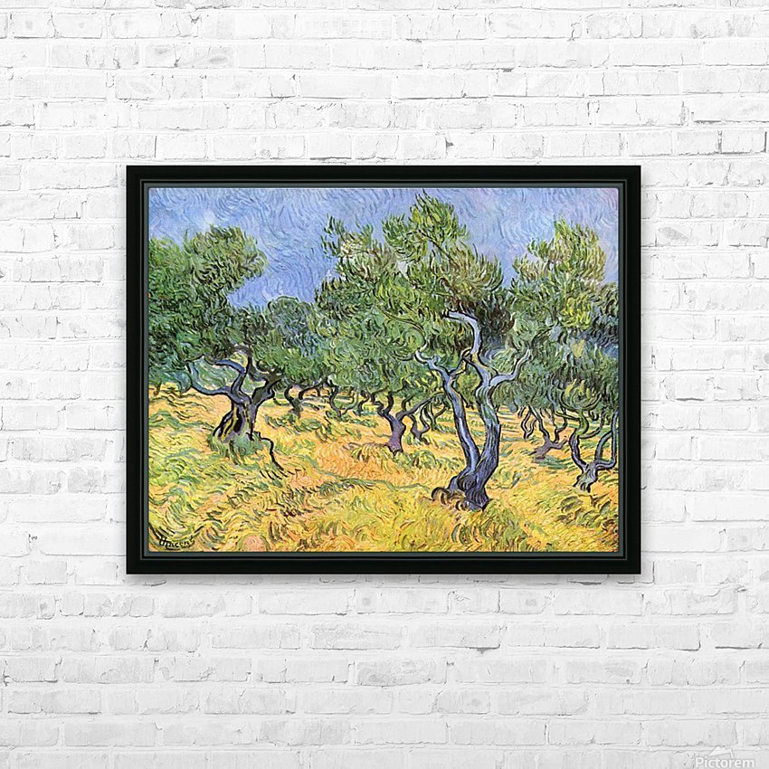 Olive Trees by Van Gogh HD Sublimation Metal print with Decorating Float Frame (BOX)