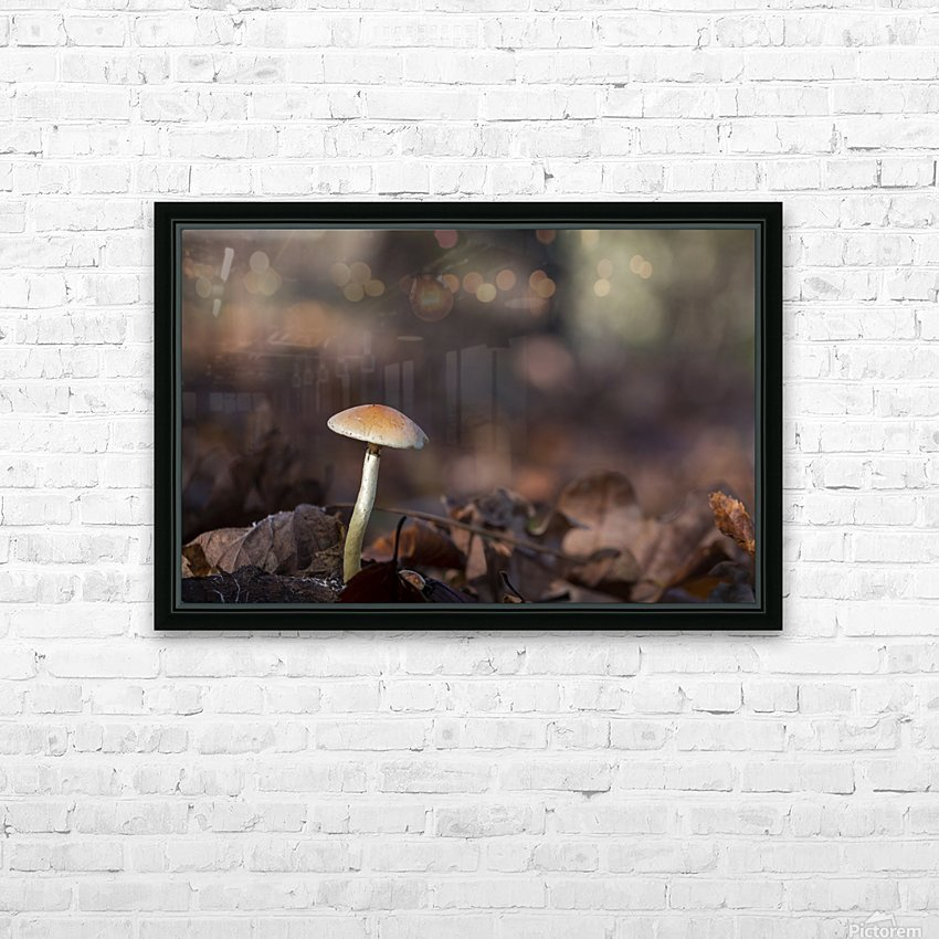 Mushrooms HD Sublimation Metal print with Decorating Float Frame (BOX)