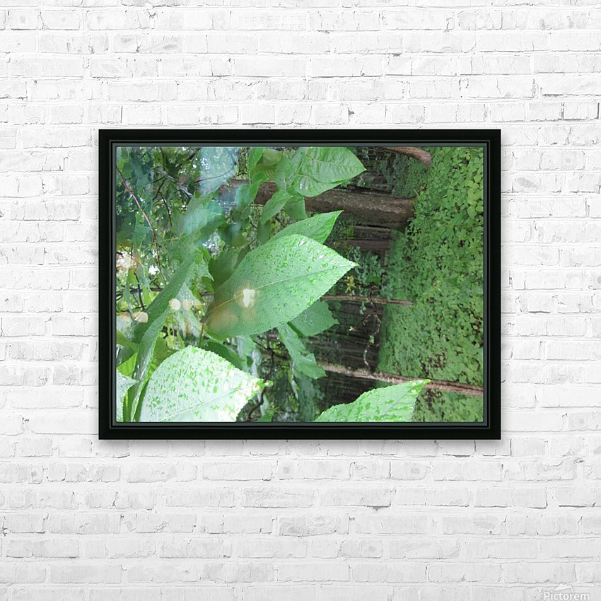 IMG_4893 HD Sublimation Metal print with Decorating Float Frame (BOX)