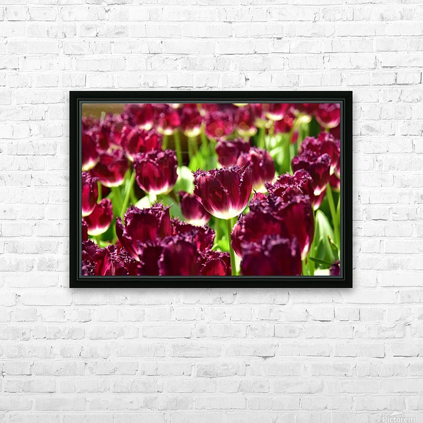 Plants - Flowers - 006 HD Sublimation Metal print with Decorating Float Frame (BOX)