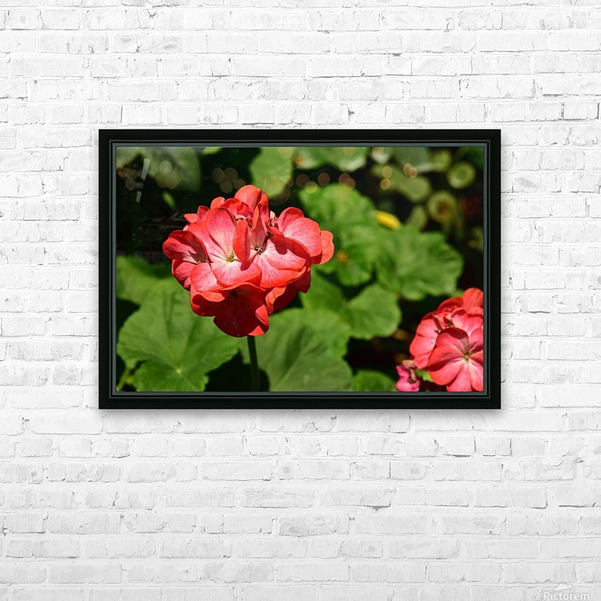 Plants - Flowers - 010 HD Sublimation Metal print with Decorating Float Frame (BOX)