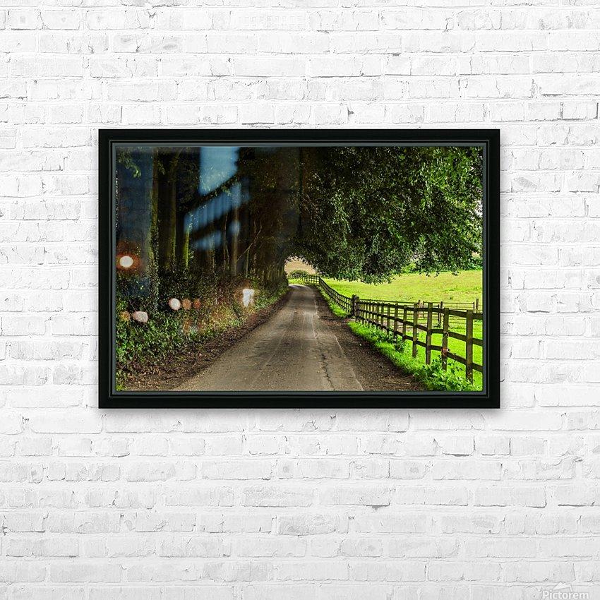 Beautiful Nature Landscape Tree Forest Trees Photography landscape photo Scenery HD sublimation métal imprimé avec décoration flotteur cadre (boîte)