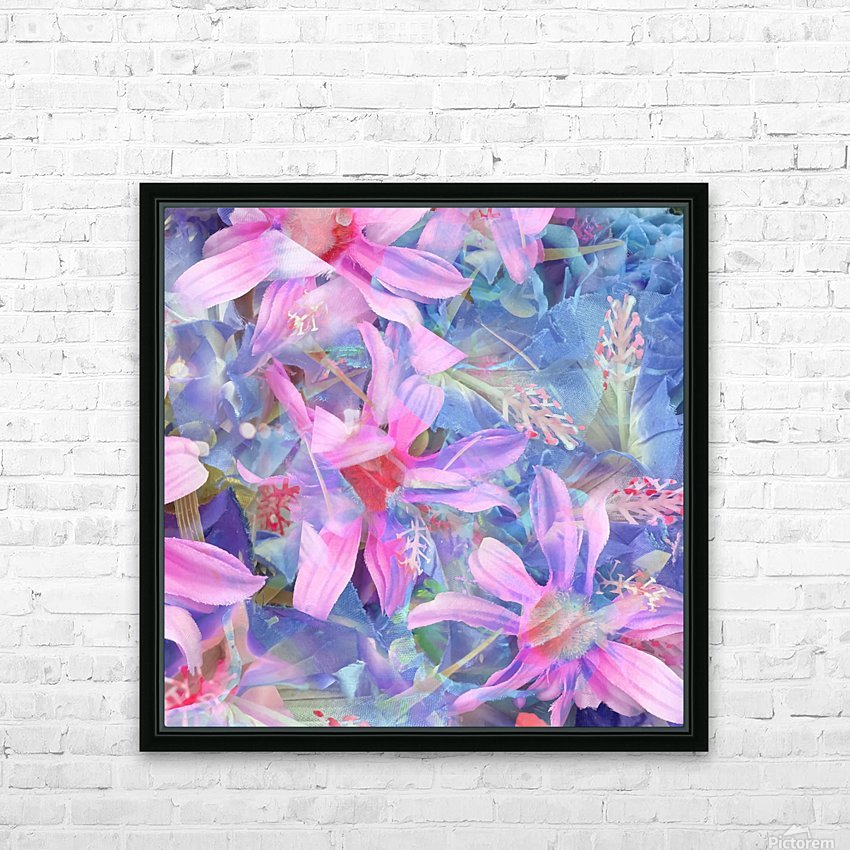 blooming pink and blue daisy flower abstract background HD Sublimation Metal print with Decorating Float Frame (BOX)