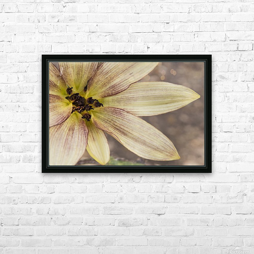 Yellow petals HD Sublimation Metal print with Decorating Float Frame (BOX)