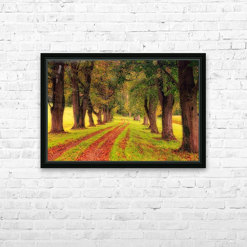 tree, avenue, nature, landscape, tree lined avenue, away, distance, trail, autumn, leaves, forest, green, mood, green leaves, lane, path, HD Sublimation Metal print with Decorating Float Frame (BOX)