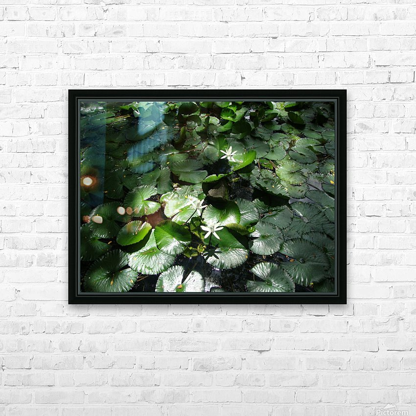 Lotus in the Sunlight HD Sublimation Metal print with Decorating Float Frame (BOX)