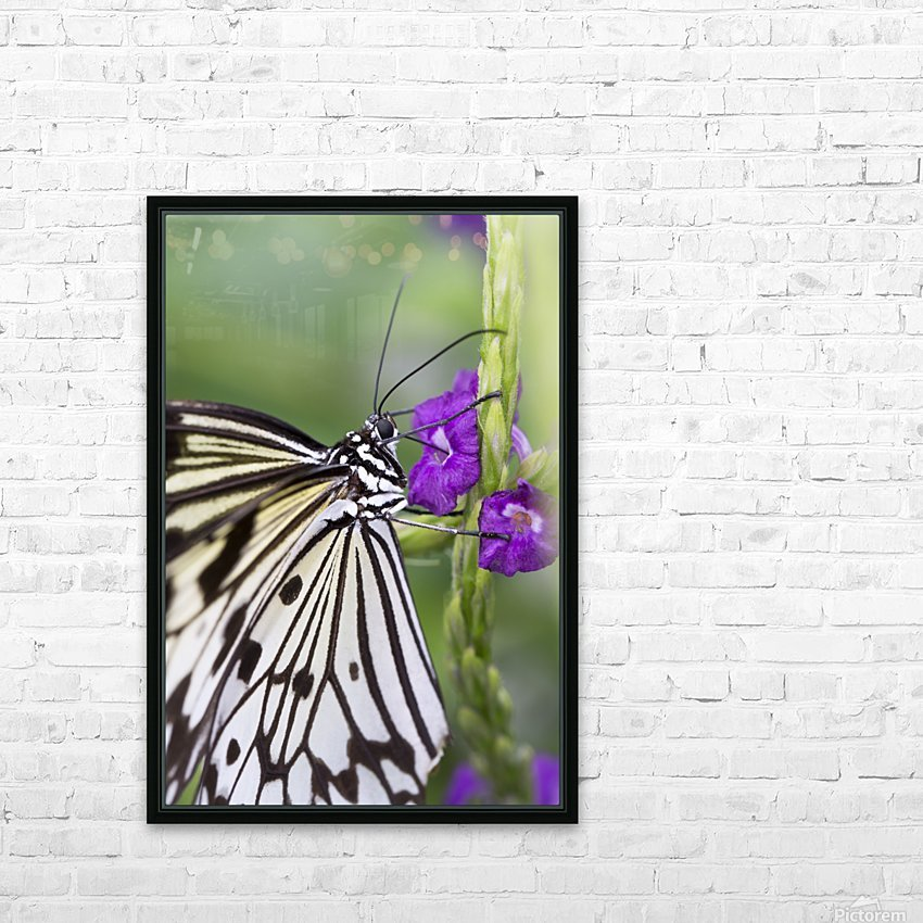 Paper Kite Butterfly HD Sublimation Metal print with Decorating Float Frame (BOX)