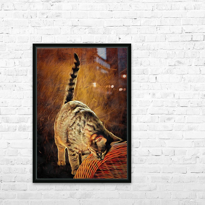 Curiosity And The Cat HD Sublimation Metal print with Decorating Float Frame (BOX)