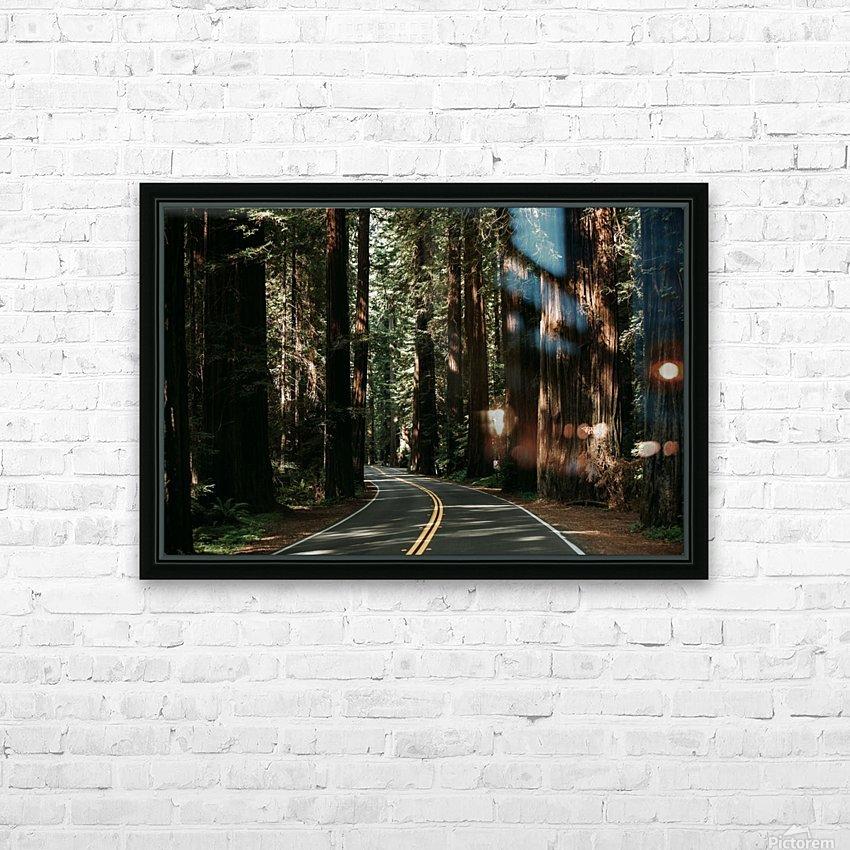Avenue of the Giants HD sublimation métal imprimé avec décoration flotteur cadre (boîte)