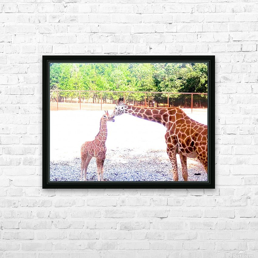 100_0842 4 HD Sublimation Metal print with Decorating Float Frame (BOX)