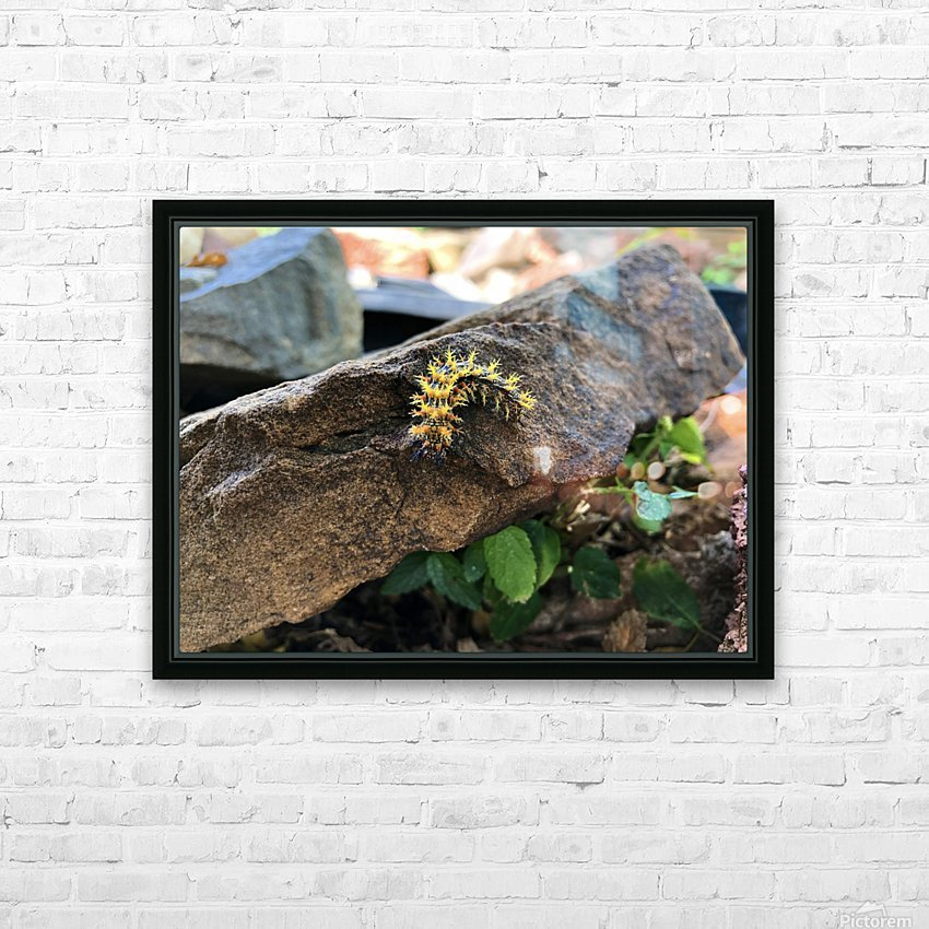 Caterpillar HD Sublimation Metal print with Decorating Float Frame (BOX)