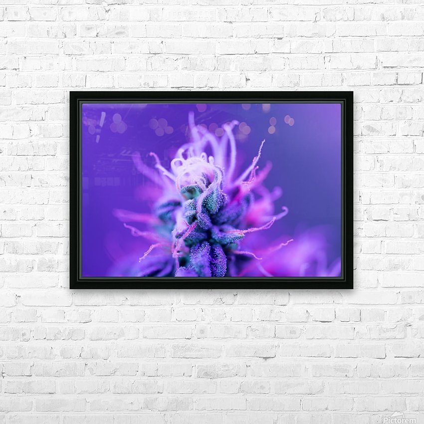 FloweringPhase HD Sublimation Metal print with Decorating Float Frame (BOX)