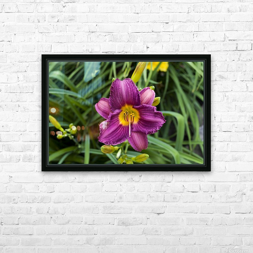 Purple Stealla Doro Day Lily HD Sublimation Metal print with Decorating Float Frame (BOX)