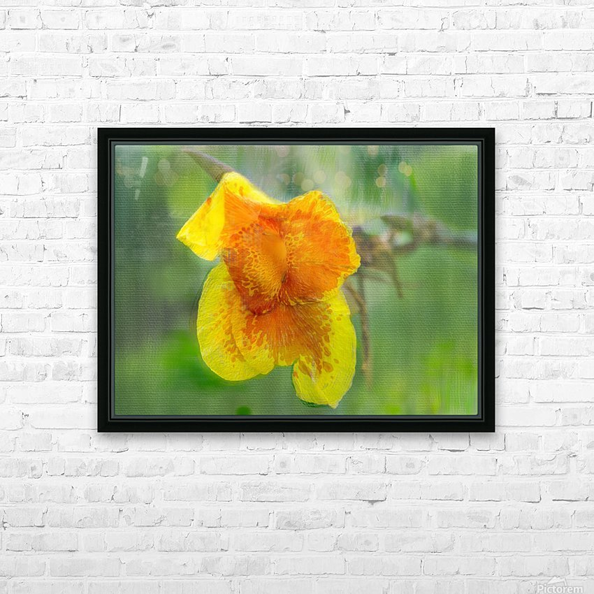 Canna Lily Digital Painting 52 70 200px HD Sublimation Metal print with Decorating Float Frame (BOX)