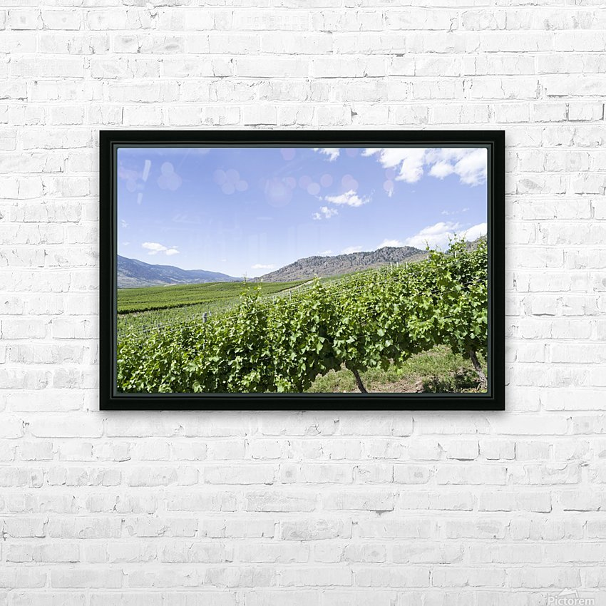 Okanagan Valley winery HD Sublimation Metal print with Decorating Float Frame (BOX)