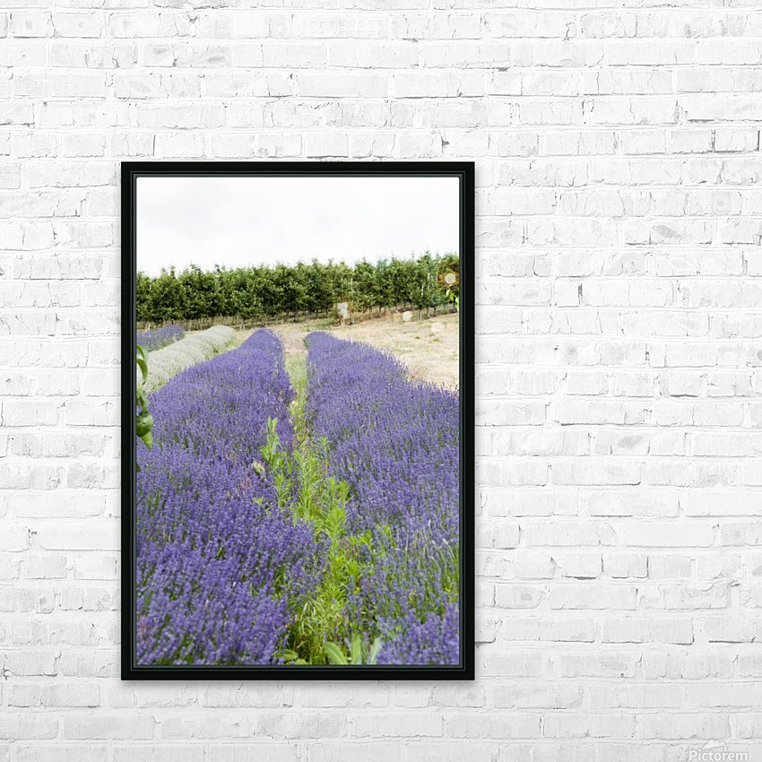 Lavender plants and fruit trees 6 HD Sublimation Metal print with Decorating Float Frame (BOX)