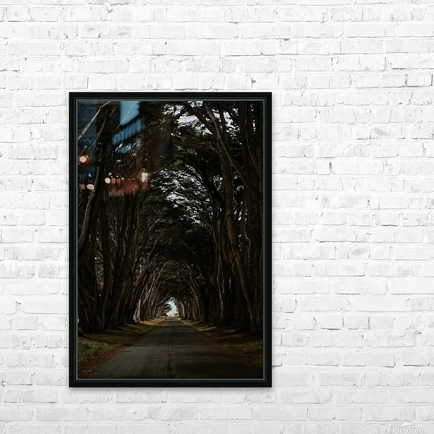 Cypress Tree Tunnel California HD sublimation métal imprimé avec décoration flotteur cadre (boîte)