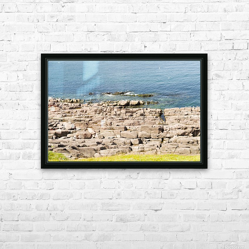 View from Cape Spear Walking trails  HD Sublimation Metal print with Decorating Float Frame (BOX)