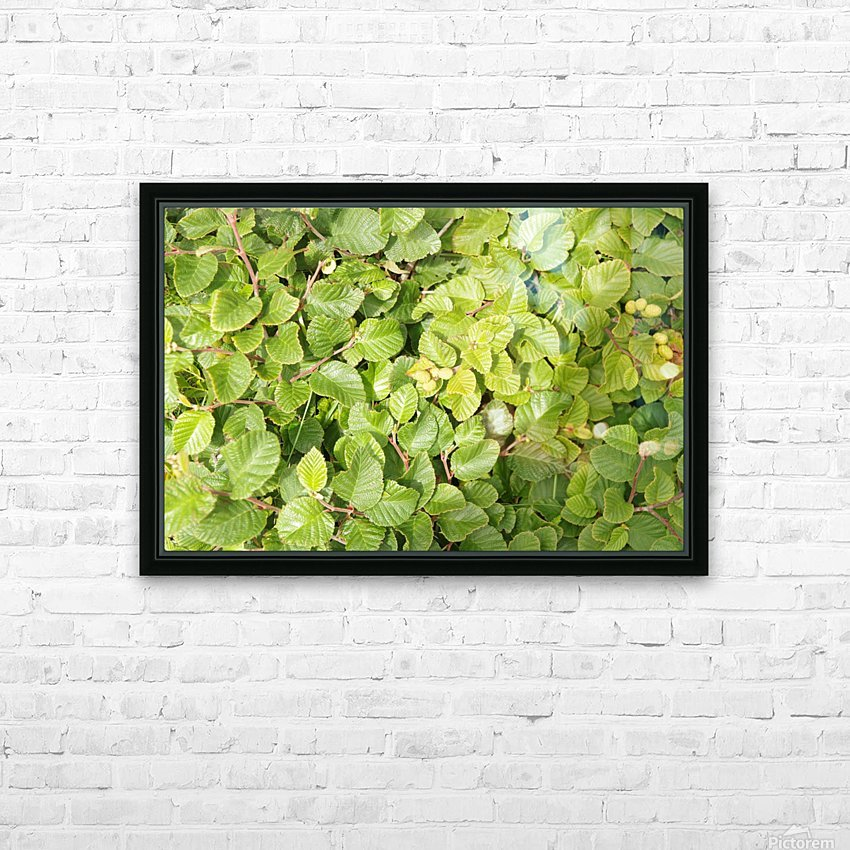 Despite a harsh and windswept environment their are many flowers plants  and shrubs that grow and prosper here 3 HD Sublimation Metal print with Decorating Float Frame (BOX)