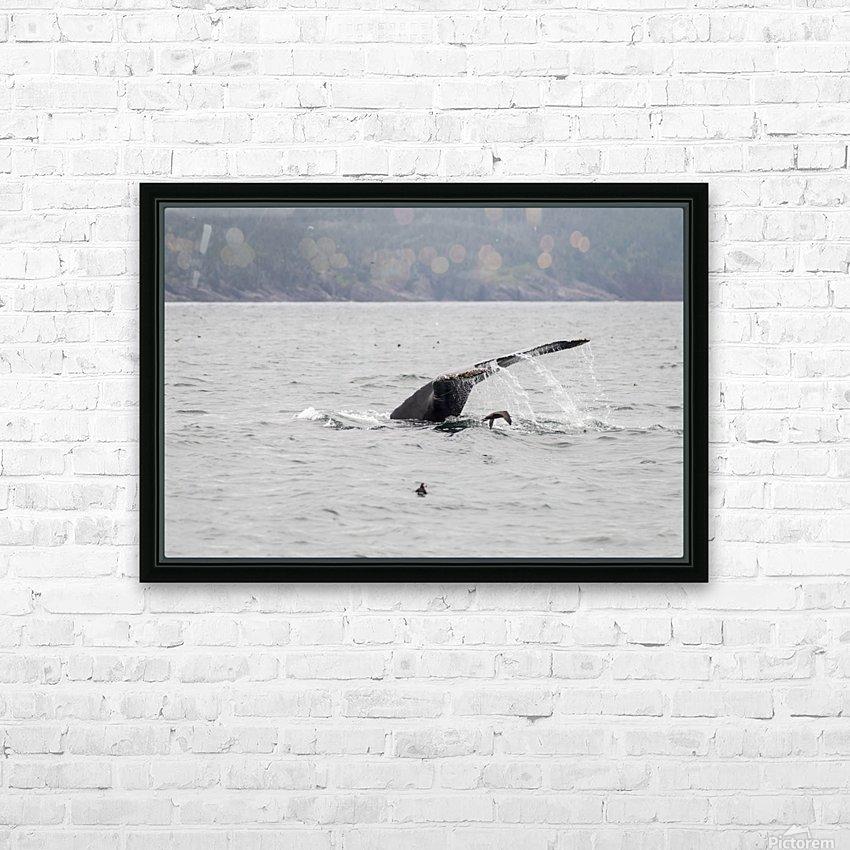 Humback whale a puffin and a murre 4 HD Sublimation Metal print with Decorating Float Frame (BOX)