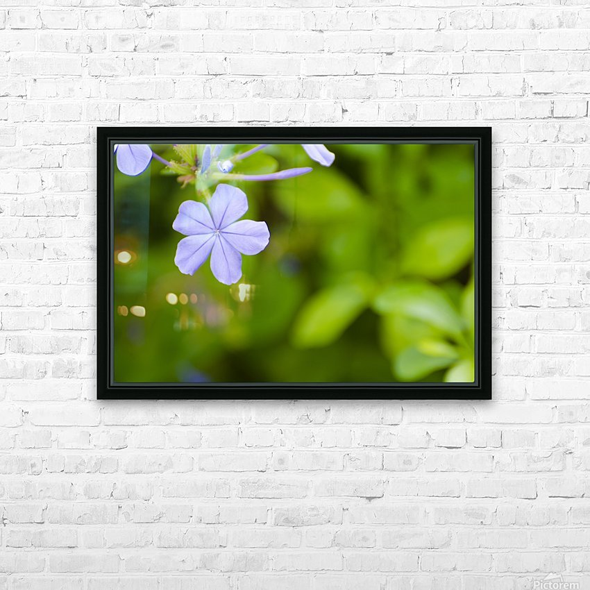 Flora HD Sublimation Metal print with Decorating Float Frame (BOX)