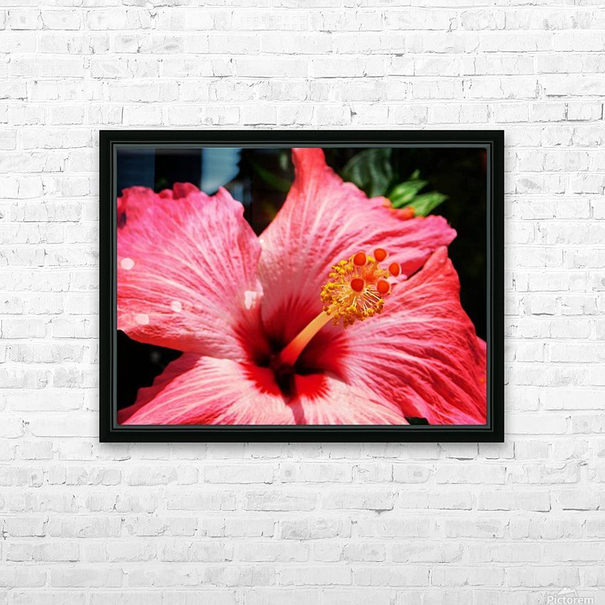 close up HD Sublimation Metal print with Decorating Float Frame (BOX)