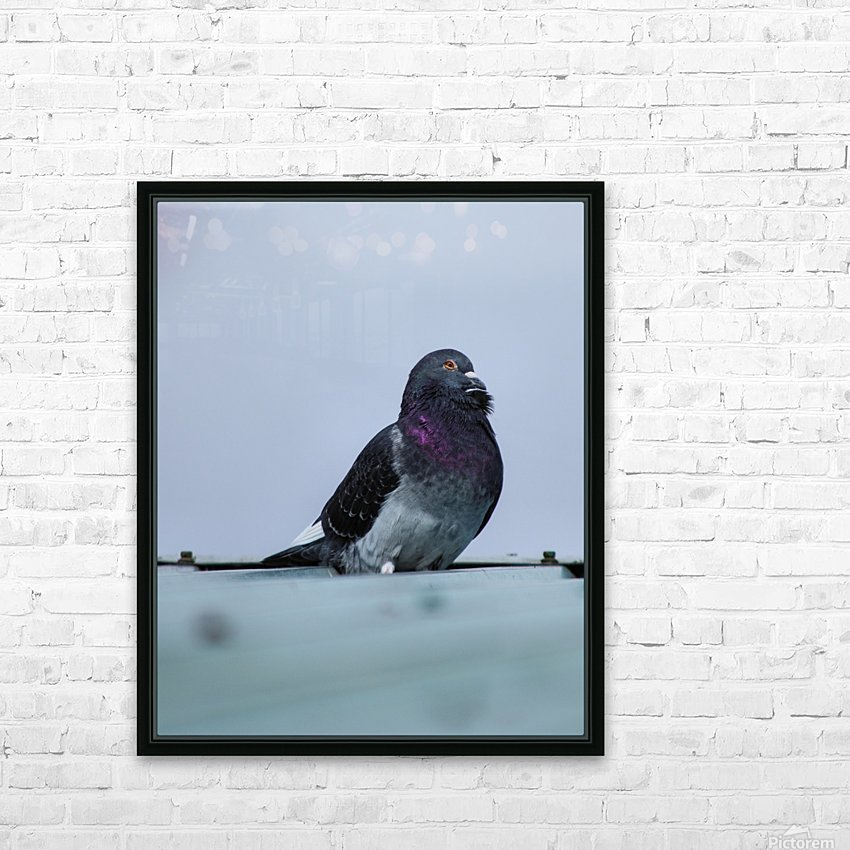 Beauty HD Sublimation Metal print with Decorating Float Frame (BOX)