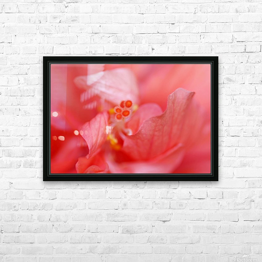 Double Peach Hibisicus HD Sublimation Metal print with Decorating Float Frame (BOX)