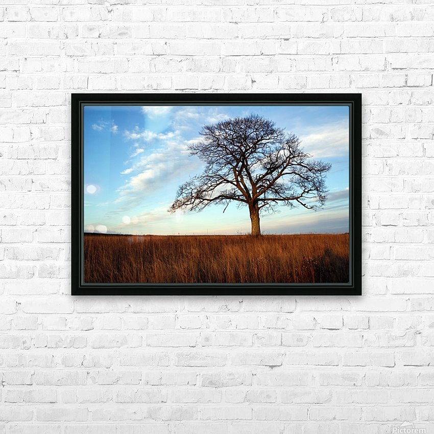 Shubenacadie Tree HD Sublimation Metal print with Decorating Float Frame (BOX)