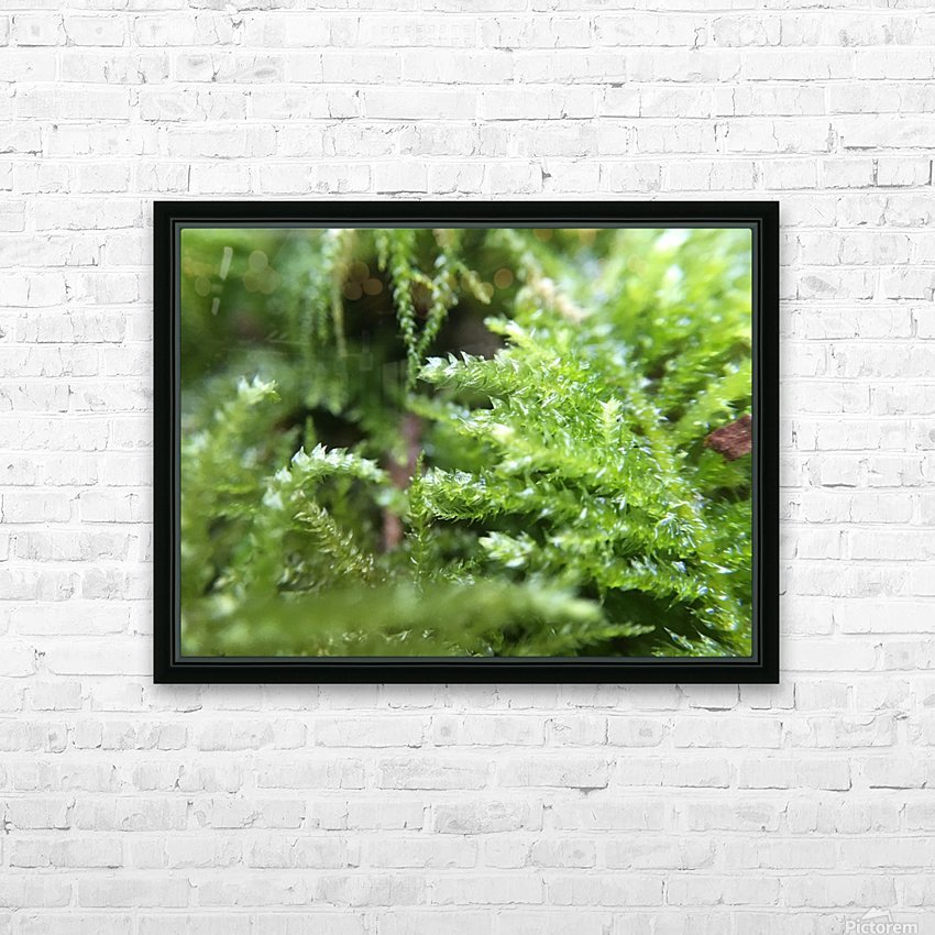 IMG_3563 HD Sublimation Metal print with Decorating Float Frame (BOX)