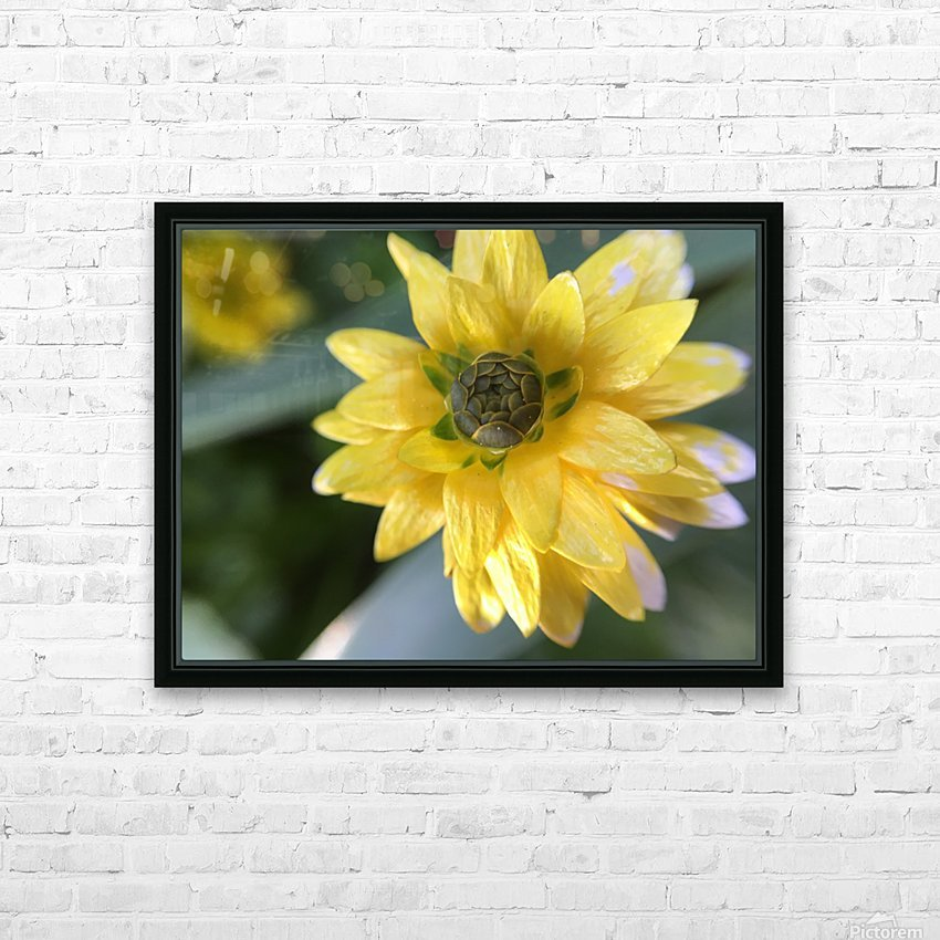 IMG_3924 HD Sublimation Metal print with Decorating Float Frame (BOX)