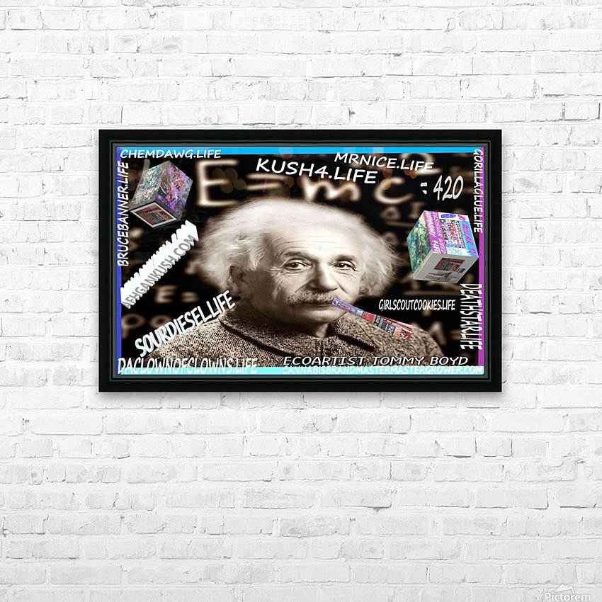 E=MC2=420  HD Sublimation Metal print with Decorating Float Frame (BOX)