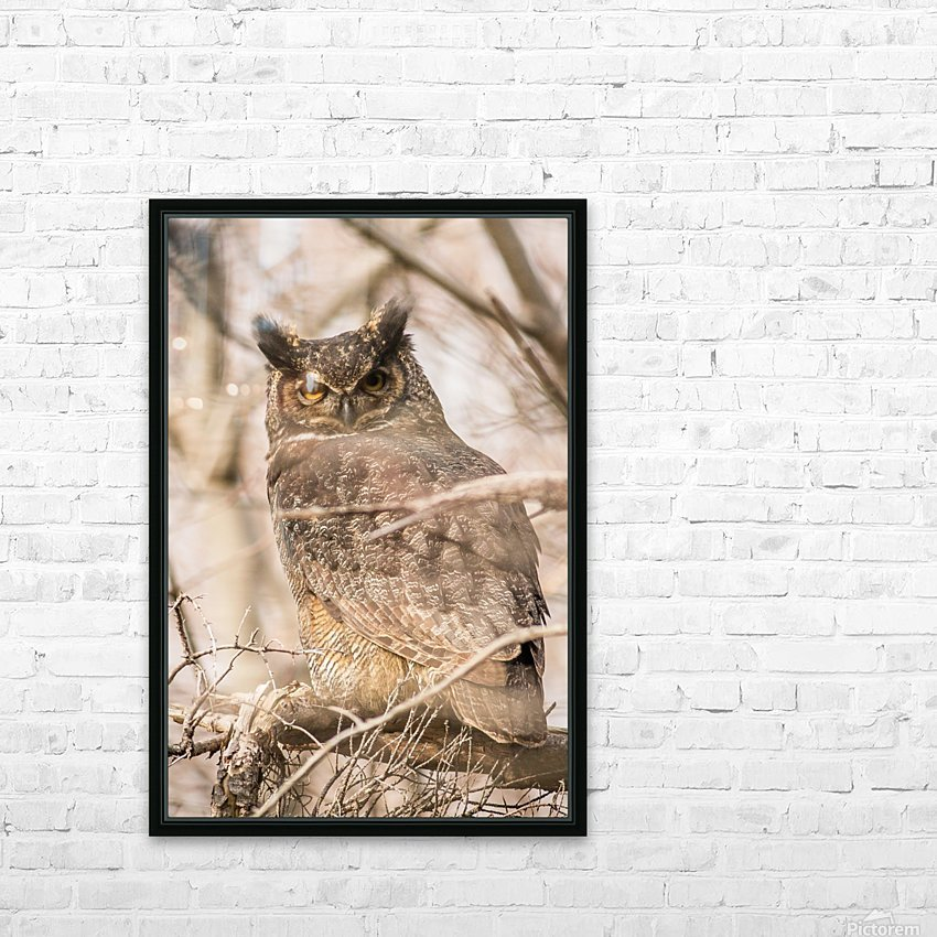 Great horned HD Sublimation Metal print with Decorating Float Frame (BOX)