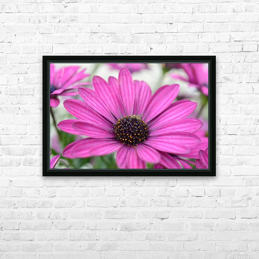 Purple Flower Photograph HD Sublimation Metal print with Decorating Float Frame (BOX)