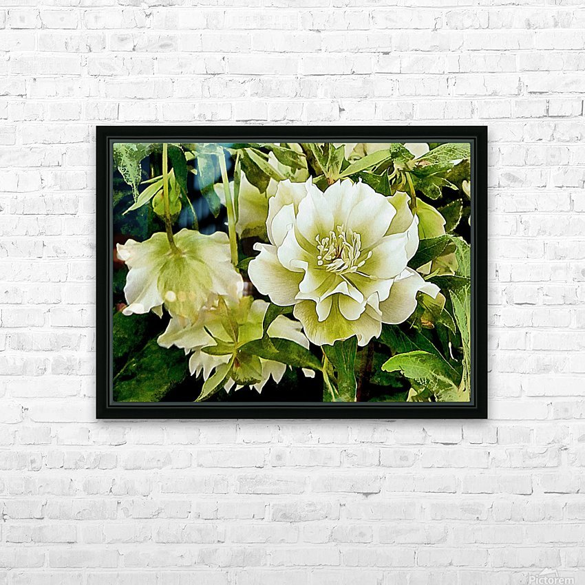 Beauty In A Lenten Rose HD Sublimation Metal print with Decorating Float Frame (BOX)