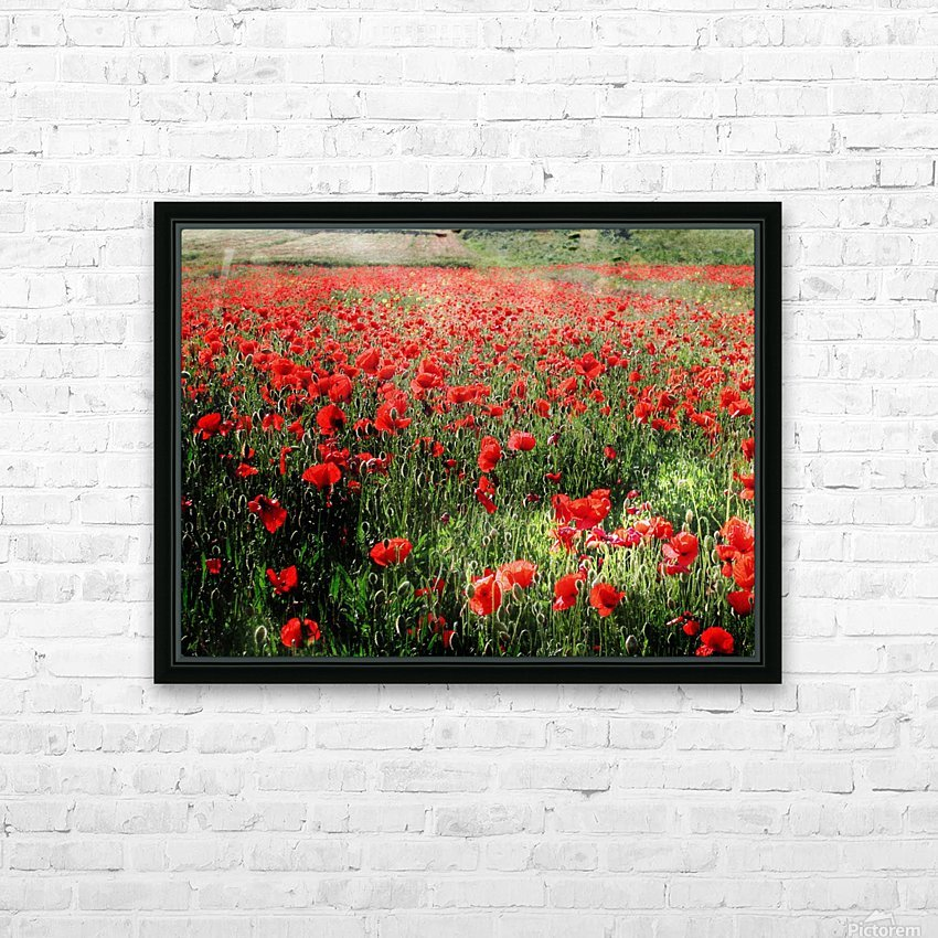 Rolling Fields with Poppies HD Sublimation Metal print with Decorating Float Frame (BOX)