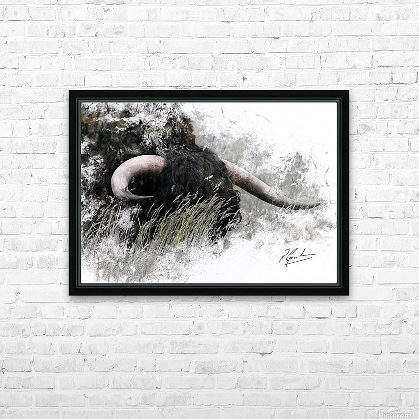 Bull in long grass HD Sublimation Metal print with Decorating Float Frame (BOX)