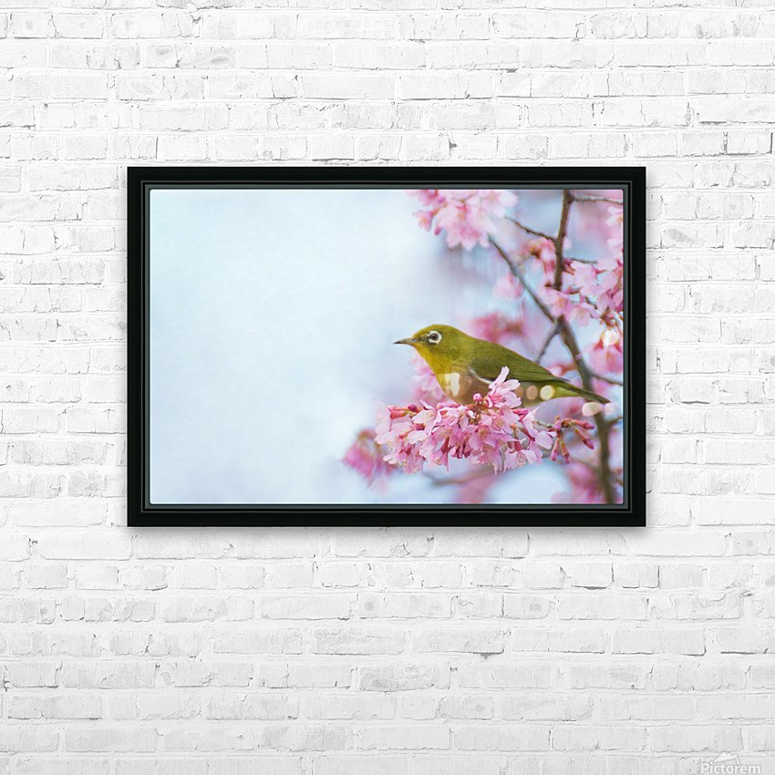 Bird In Sakura Cherry Blossom Tree HD Sublimation Metal print with Decorating Float Frame (BOX)