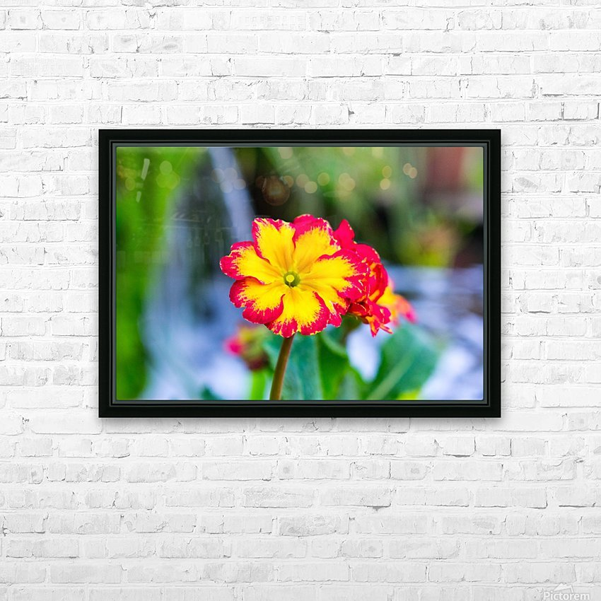20190316 DSC_0217 2 HD Sublimation Metal print with Decorating Float Frame (BOX)
