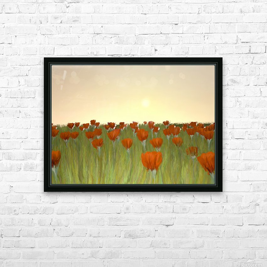 RED POPPIES at Sunset HD Sublimation Metal print with Decorating Float Frame (BOX)