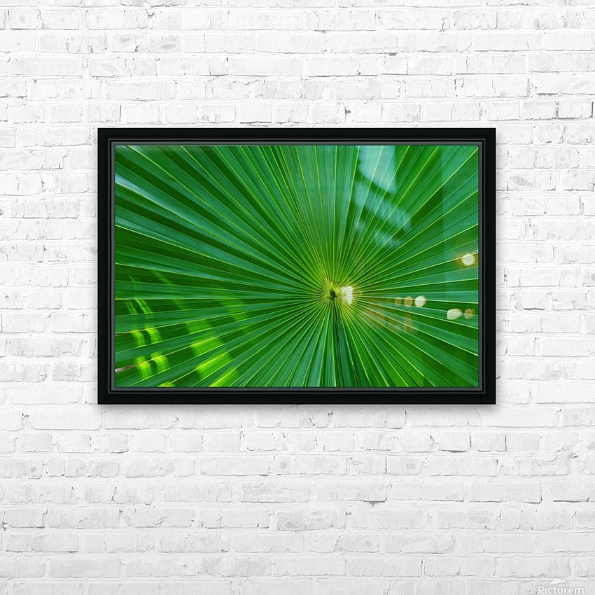 Palm tree detail HD Sublimation Metal print with Decorating Float Frame (BOX)